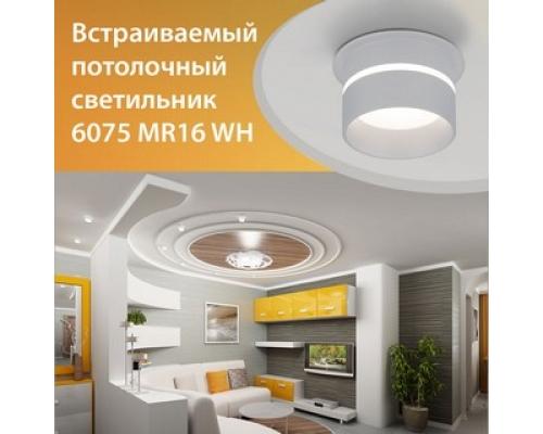Новинка! Встраиваемый точечный светильник 6075 MR16